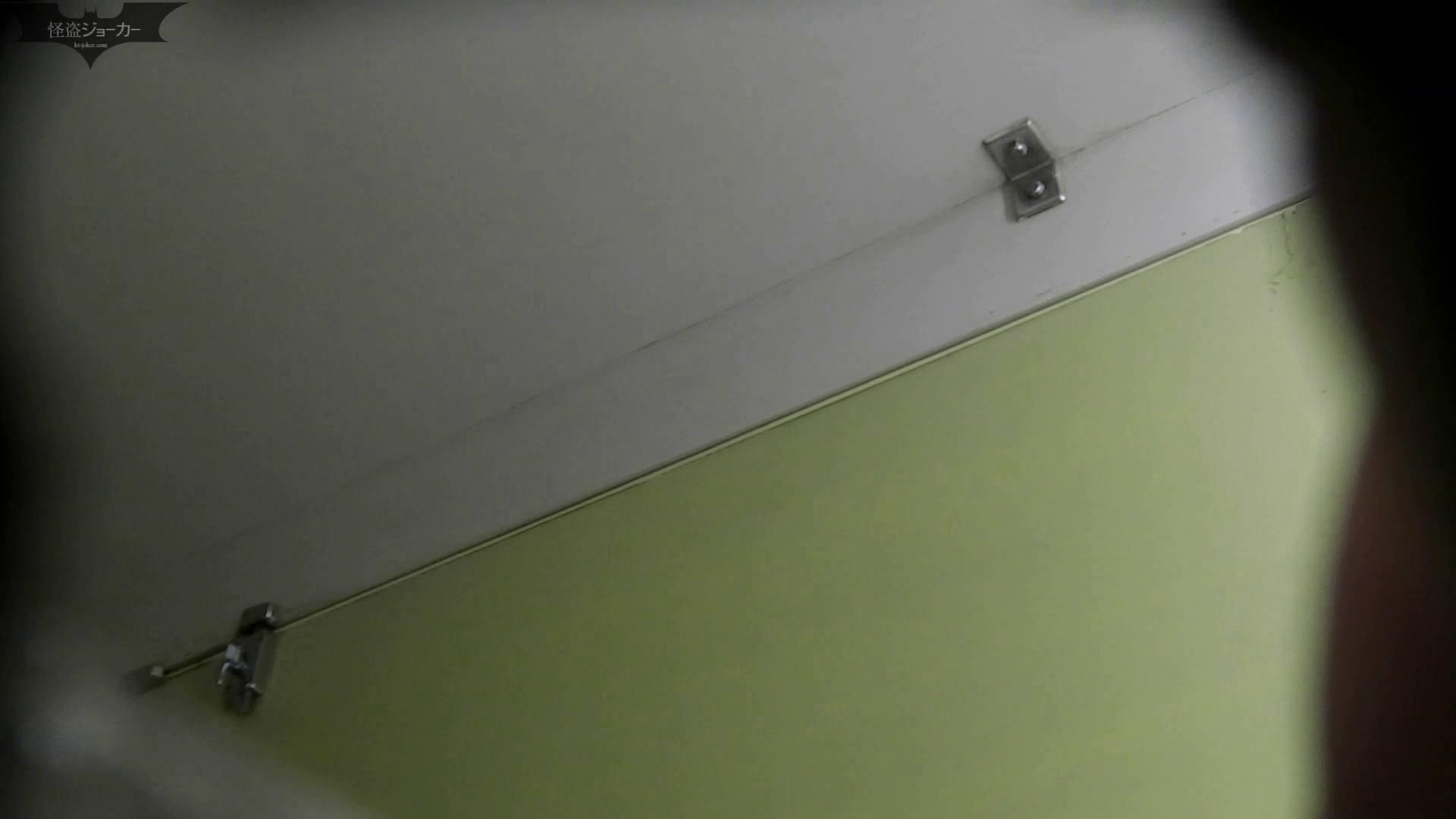 【美しき個室な世界】洗面所特攻隊 vol.046 更に進化【2015・07位】 洗面所  66pic 24