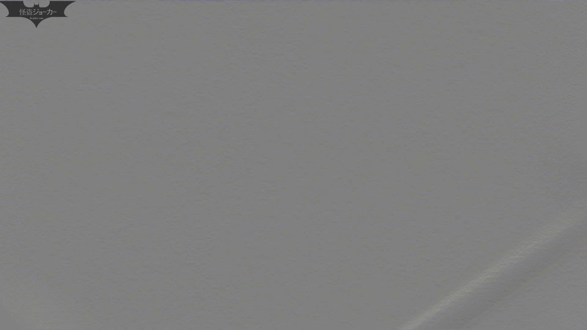 【美しき個室な世界】洗面所特攻隊 vol.046 更に進化【2015・07位】 洗面所  66pic 48