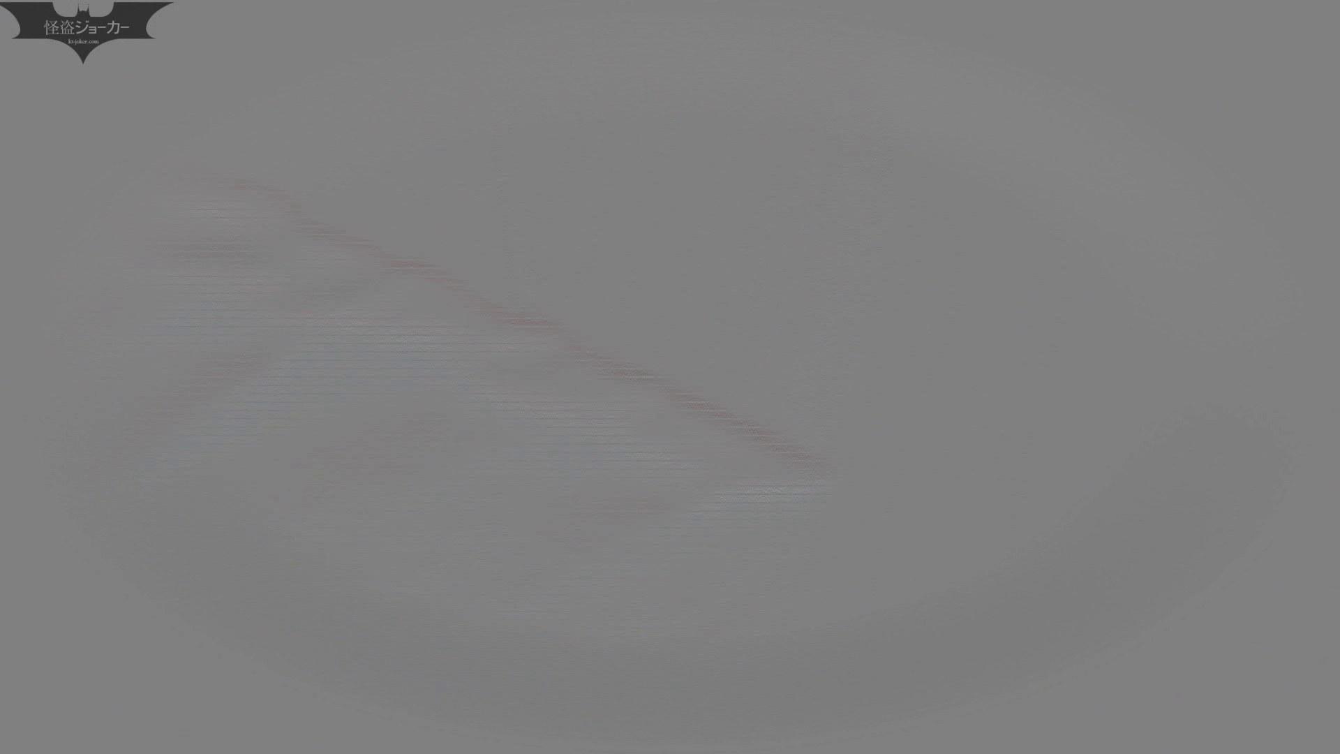 【美しき個室な世界】洗面所特攻隊 vol.046 更に進化【2015・07位】 洗面所  66pic 57