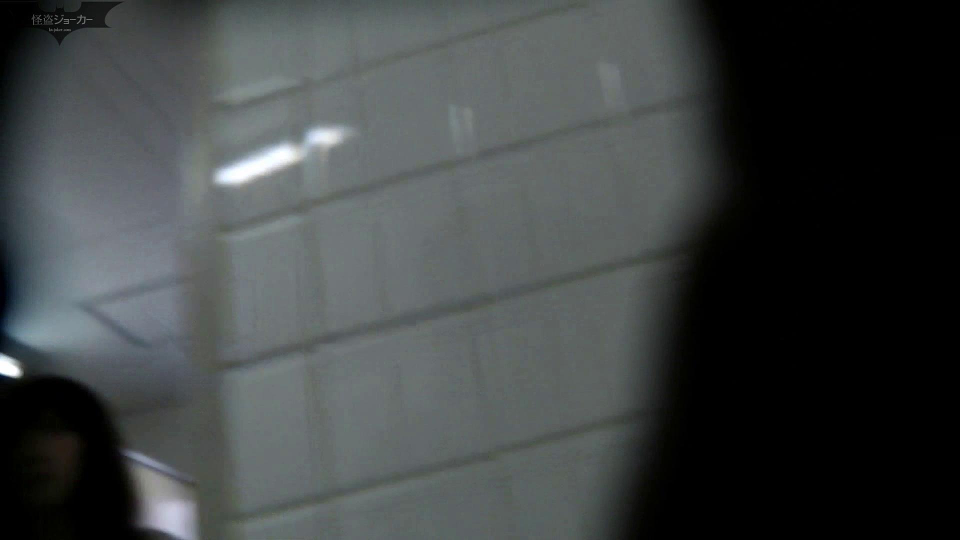 【美しき個室な世界】洗面所特攻隊 vol.046 更に進化【2015・07位】 洗面所  66pic 61
