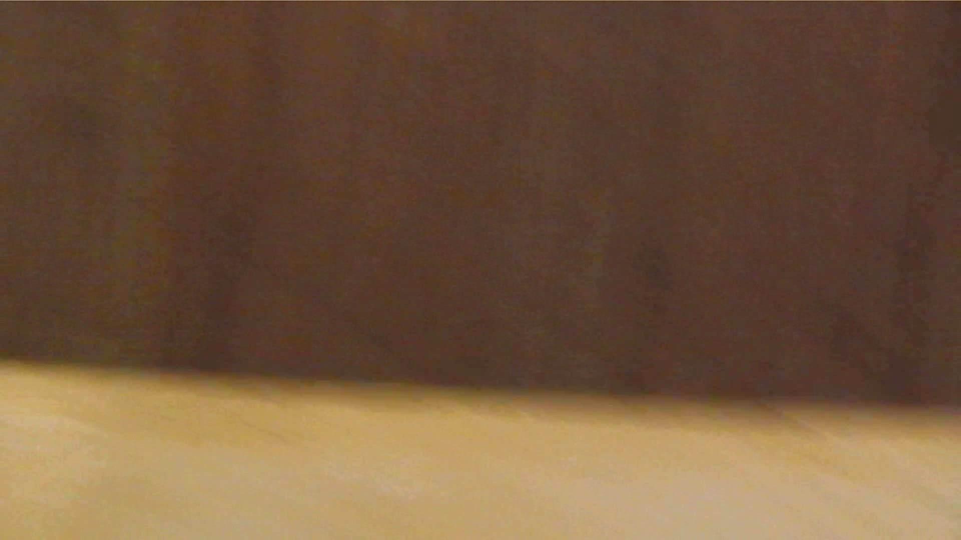 阿国ちゃんの「和式洋式七変化」No.1 洗面所  113pic 31
