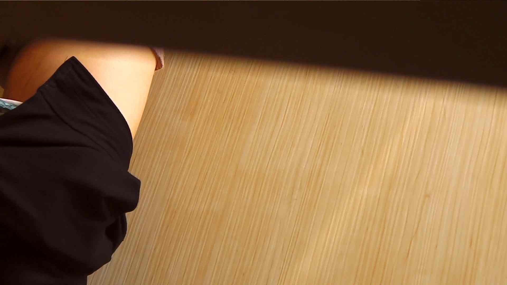 阿国ちゃんの「和式洋式七変化」No.1 洗面所  113pic 65