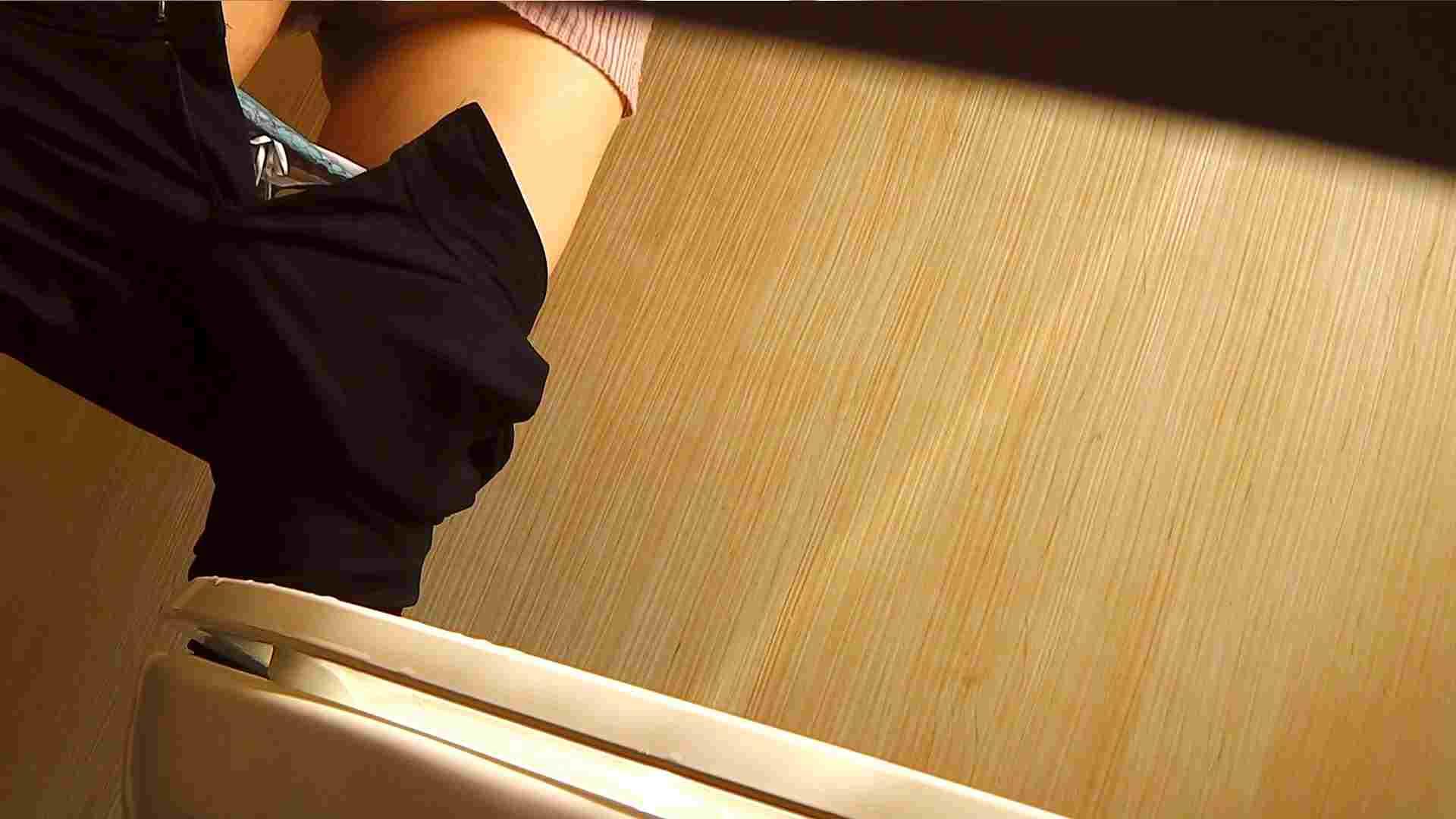 阿国ちゃんの「和式洋式七変化」No.1 洗面所  113pic 67