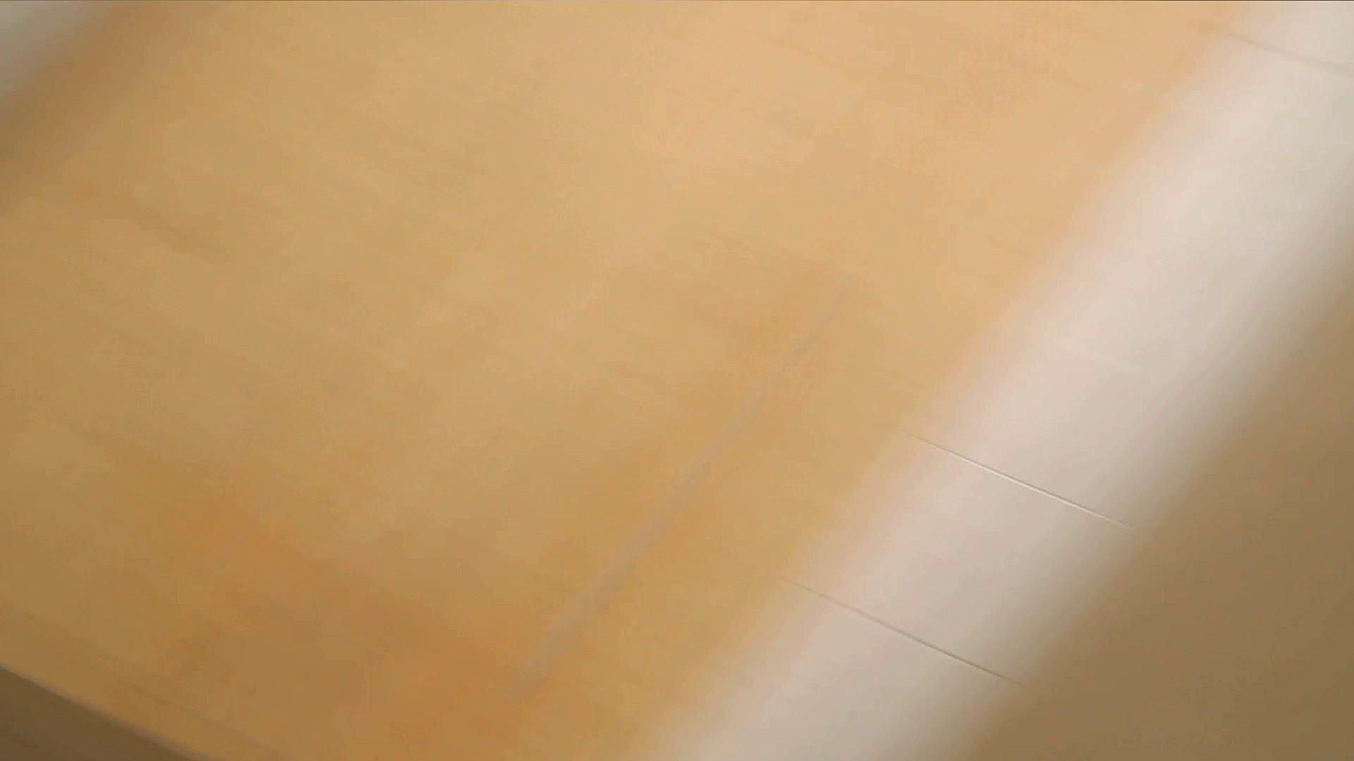 阿国ちゃんの「和式洋式七変化」No.1 洗面所  113pic 91