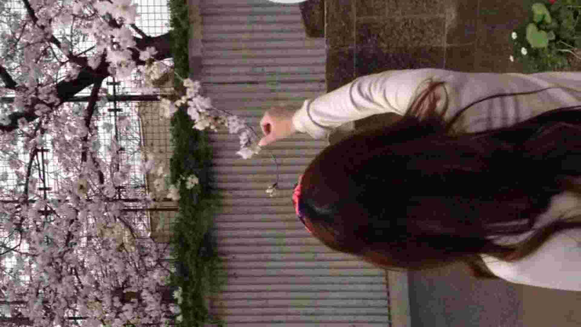 23(19日目)桜を見ながらお散歩 マンコ  91pic 3