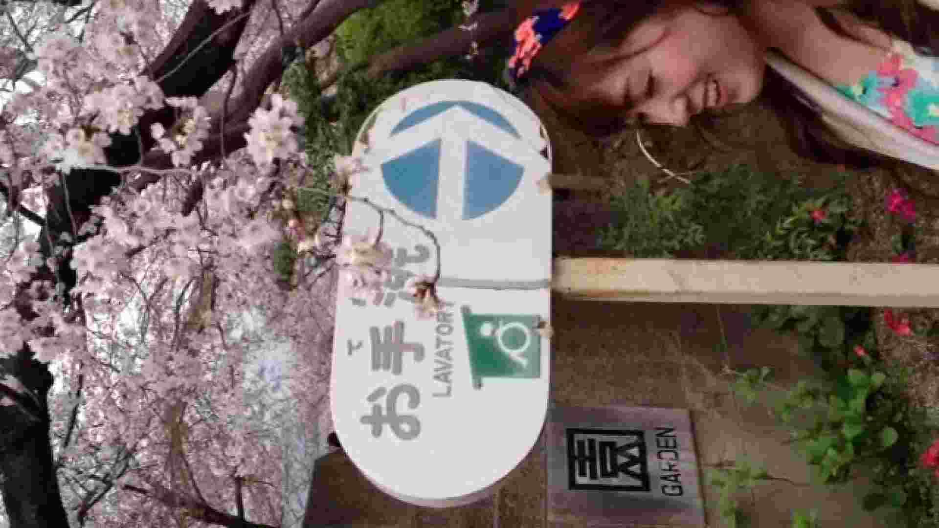 23(19日目)桜を見ながらお散歩 マンコ  91pic 7