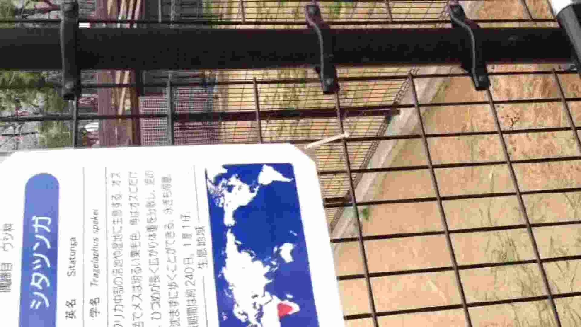 23(19日目)桜を見ながらお散歩 マンコ  91pic 27