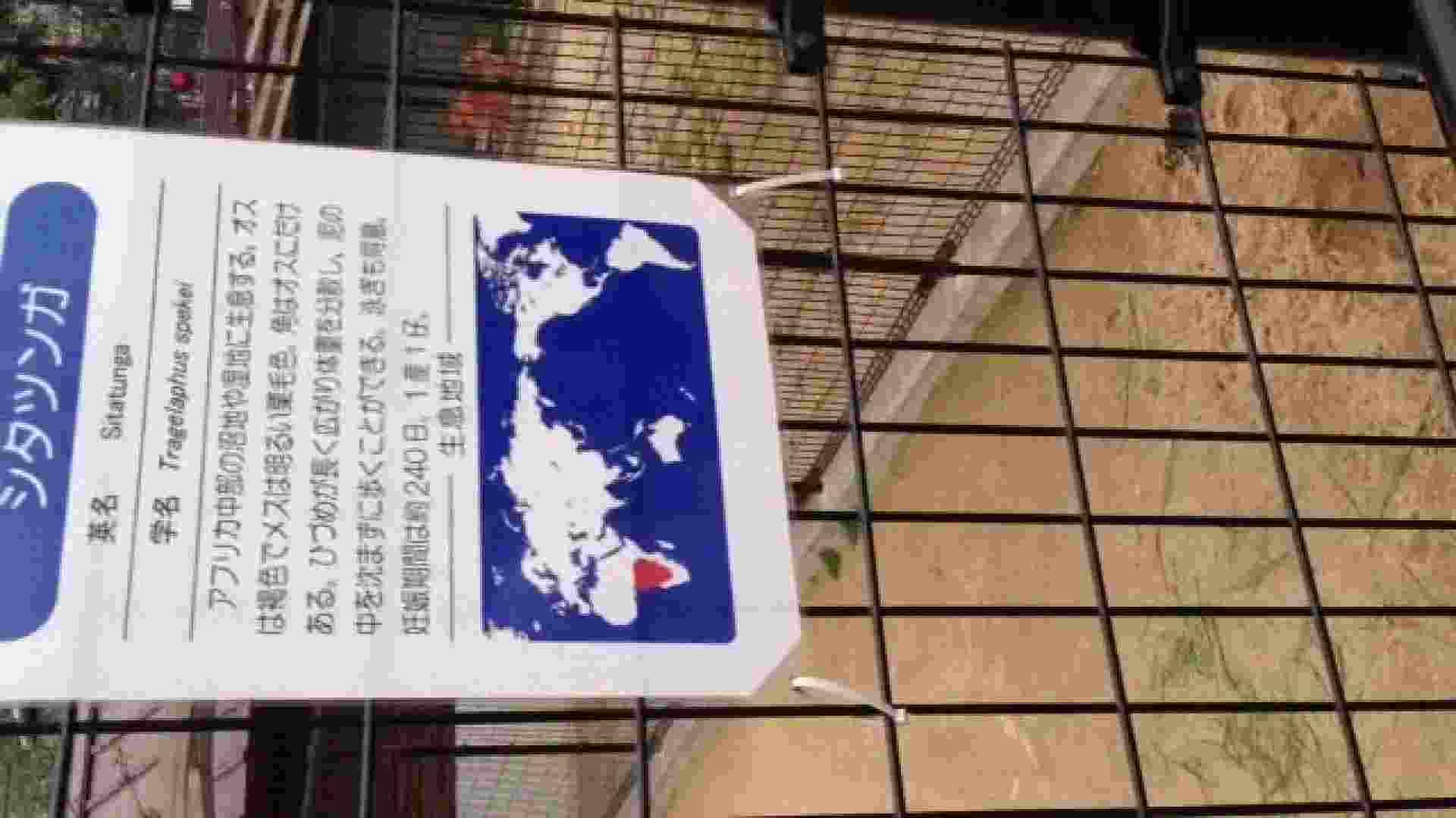 23(19日目)桜を見ながらお散歩 マンコ  91pic 31