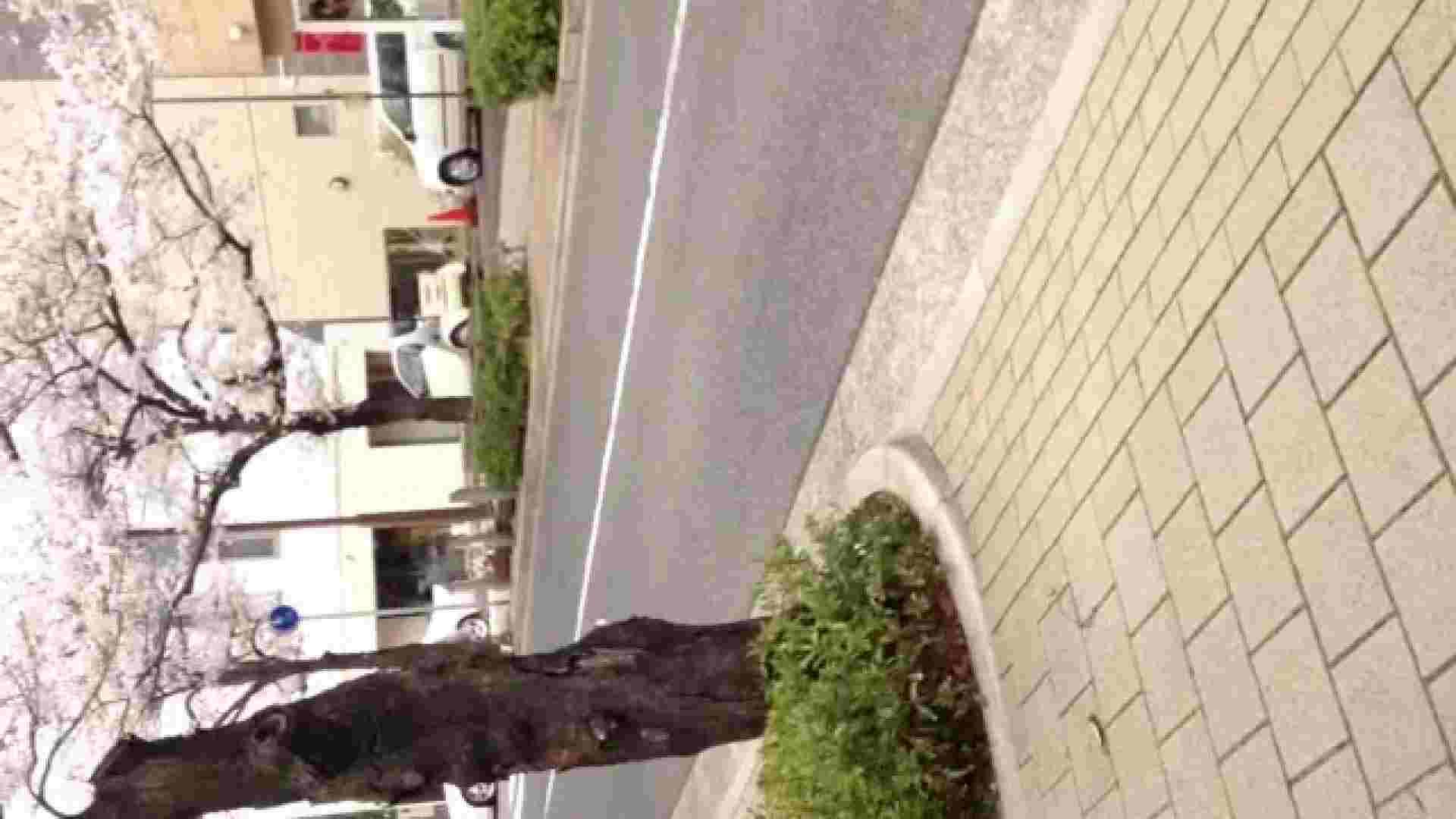 23(19日目)桜を見ながらお散歩 マンコ  91pic 49