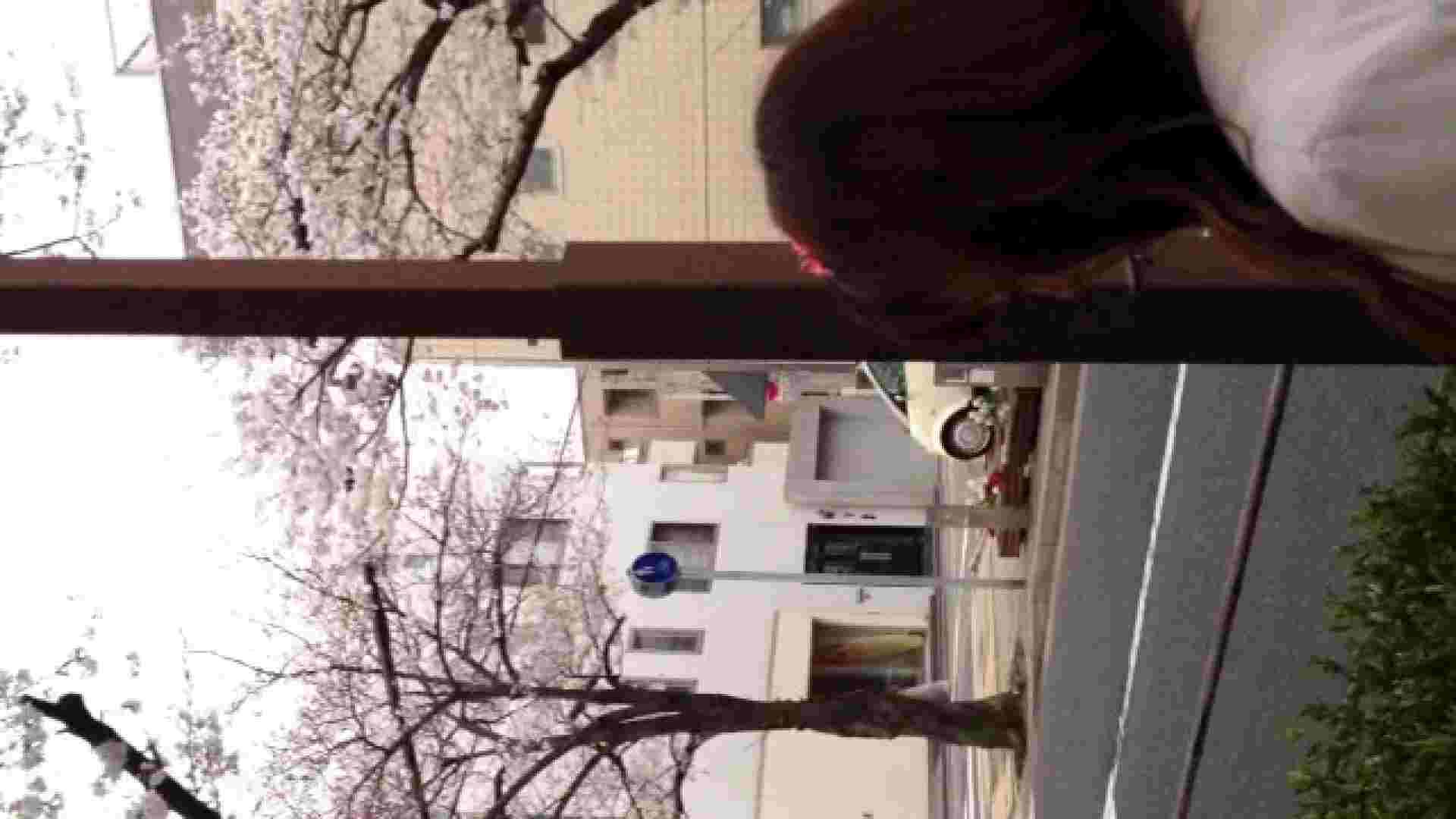 23(19日目)桜を見ながらお散歩 マンコ  91pic 56