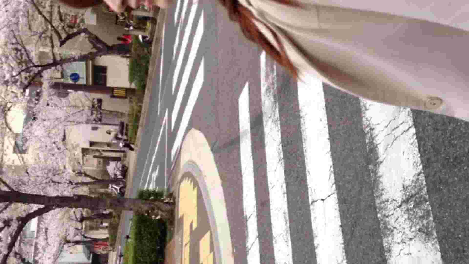 23(19日目)桜を見ながらお散歩 マンコ  91pic 60