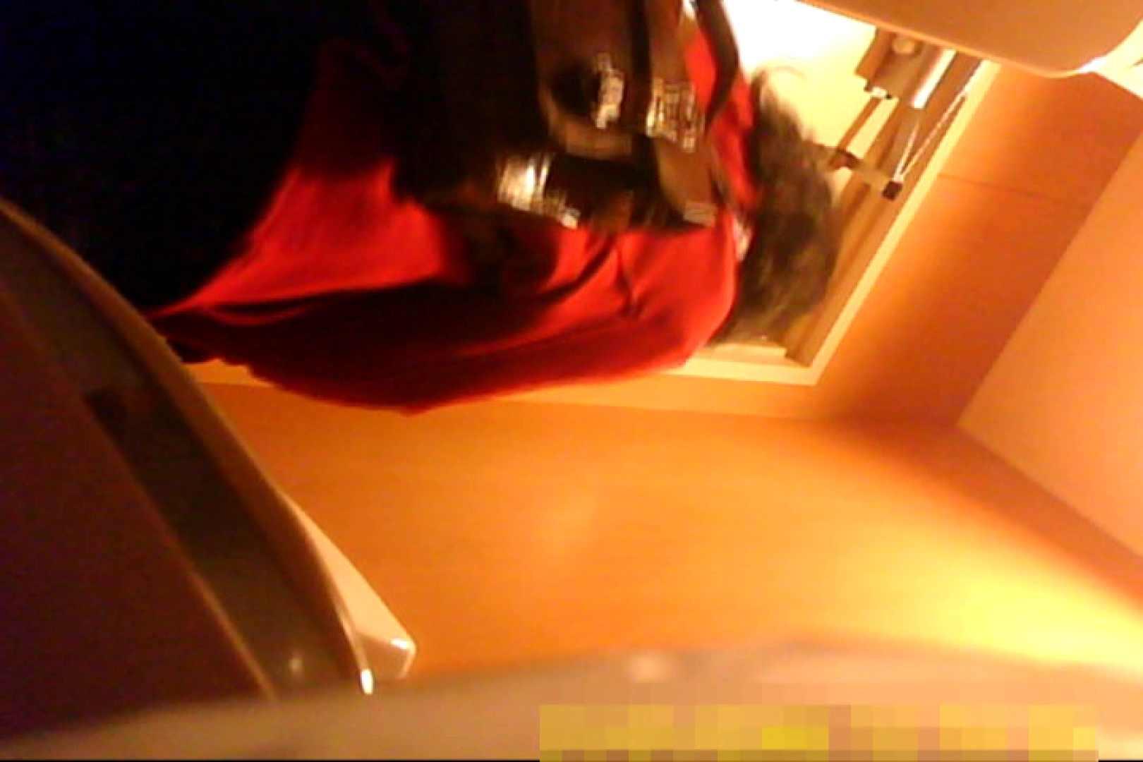 魅惑の化粧室~禁断のプライベート空間~vol.6 お姉さん  81pic 53