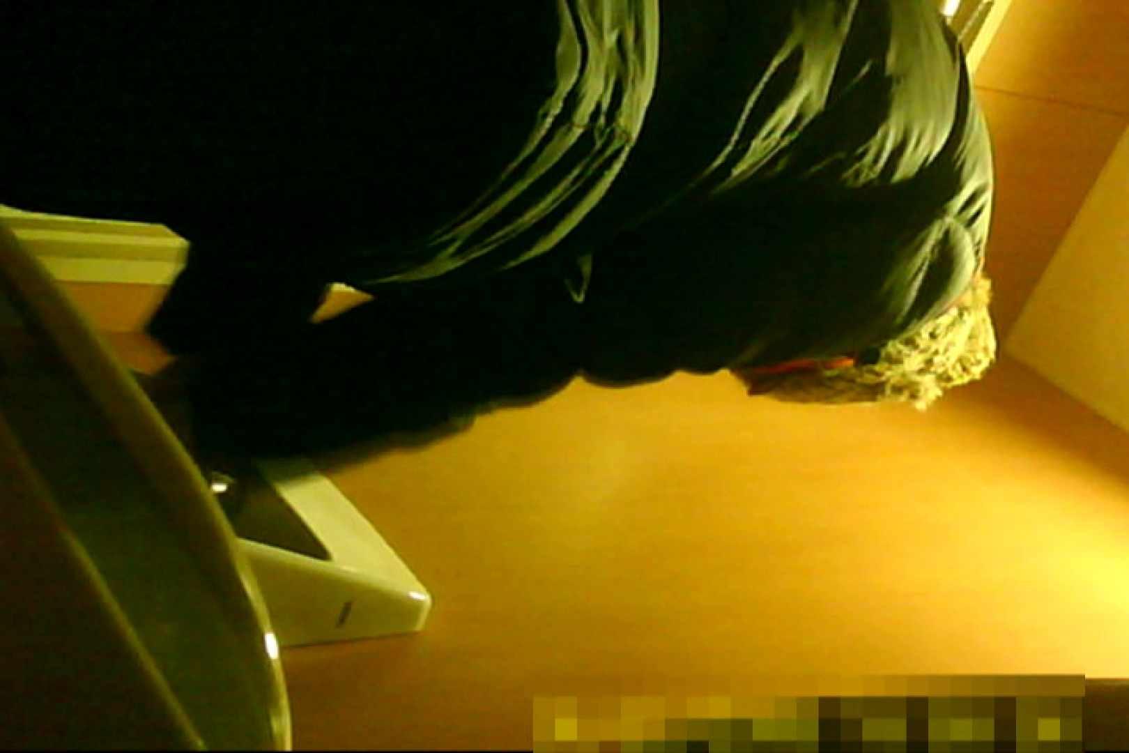 魅惑の化粧室~禁断のプライベート空間~15 プライベート  103pic 41