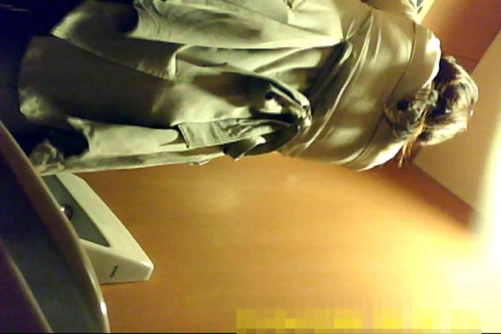 魅惑の化粧室~禁断のプライベート空間~29 プライベート  72pic 37