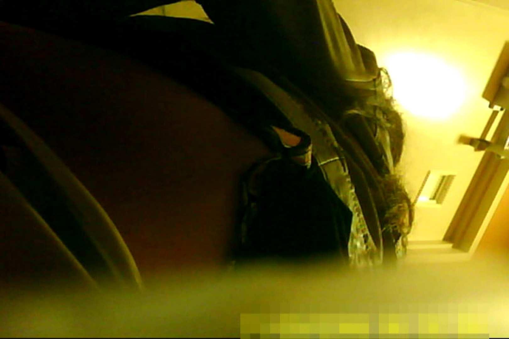 魅惑の化粧室~禁断のプライベート空間~31 盗撮  89pic 20