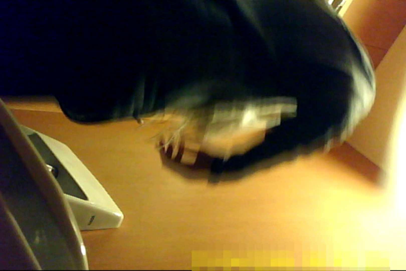 魅惑の化粧室~禁断のプライベート空間~31 盗撮  89pic 48